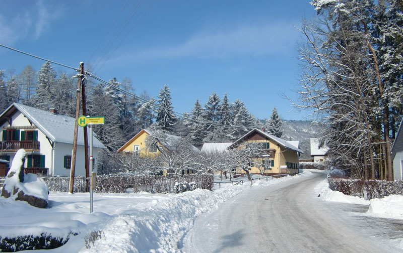 Winter-am-Hof